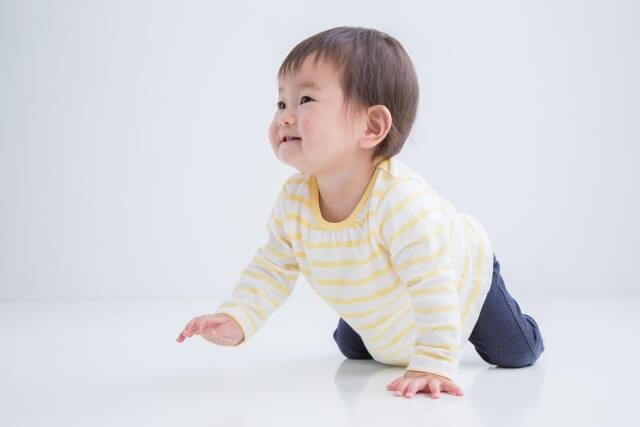 四つん這いで上手にハイハイする赤ちゃん